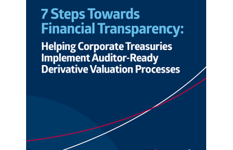7 Steps Towards Financial Transparency